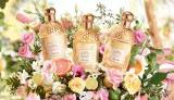 ゲラン新作香水は太陽の香り