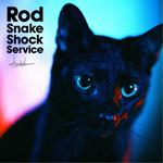 Rod Snake Shock Service