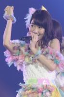『AKB48 2013真夏のドームツアー』東京ドーム公演最終日の模様 柏木由紀