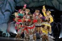 『ももいろクリスマス2013』を開催したももいろクローバーZ<br>(左から)佐々木彩夏、有安杏果、百田夏菜子、高城れに、玉井詩織