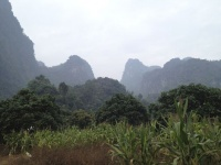 切り立った山々に囲まれた土地を借り切って開拓したタイのロケ現場の周辺の様子。ミャンマーとの国境に近いチェンダオという田舎町で撮影は行われていた。(写真:岡 大)<br>実写『ルパン三世』撮影現場レポート