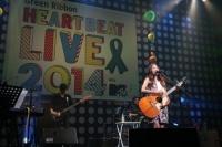 『Green Ribbon HEART BEAT LIVE 2014 with MTV』出演の(Rihwa