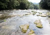 【オトナの社会科見学Vol.1ー霧島酒造】「関之尾の滝」から流れる豊富な水