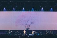 コブクロ「心」インタビュー 『TIMELESS WORLD』ツアー、さいたまスーパーアリーナ公演