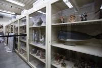 マケット(模型)が収納されているヴォルト/アニメーション・リサーチ・ライブラリー