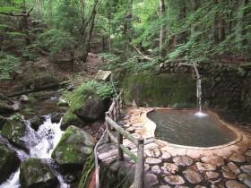 秘湯に行こう! 森林浴と入浴が同時に楽しめる【栃木県・不動の湯】