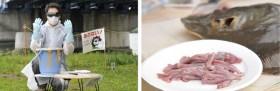 天然物を「捕まえて、食べる」面白体験を捕食の達人が伝授!