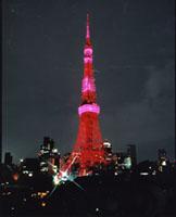 2006年大賞:ドキュメンタリー部門 加瀬俊一