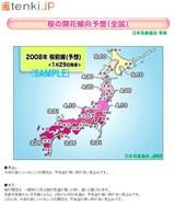 tenki.jp トップページ「桜開花予想(日本気象協会発表)」