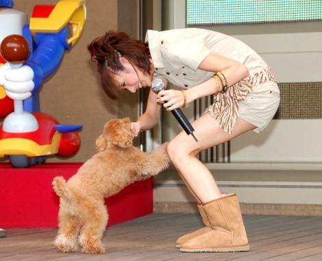 アニメと同じ衣装で子犬と戯れる南明奈