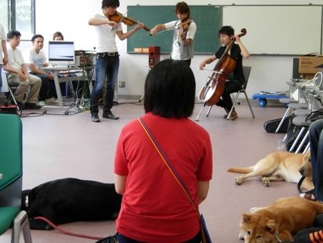 麻布大学獣医学部で行われた実験の様子(7月23日撮影)