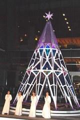 高さ8メートルのメインツリー