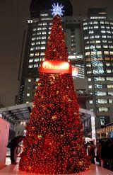 高さ10メートル!赤坂サカス初のXmasツリー
