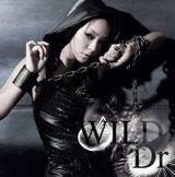 3/30付シングルランキングで首位を獲得した安室奈美恵の新曲「WILD/Dr.」【CD+DVD】
