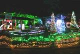 約5万個のLEDを使用し、園内を飾り付けた多摩テック