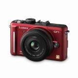 【金賞受賞】デジタルカメラ『パナソニック LUMIX DMC-GF1C』(パナソニック)
