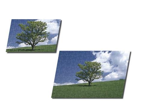 エポック社が12月5日に発売する、世界初の「2 in 1」ジグゾーパズル