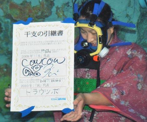 """""""丑""""から""""寅""""へ水中で『干支の引継ぎ式』が行われ、水中で引継ぎ書がお披露目された (C)ORICON DD inc."""