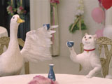 ネコとアヒルがお猪口で日本酒を飲む意外な姿も!?/『アフラック』新CM