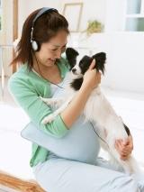 アニコム損保発表の調査によると、ペットにかける年間支出は2年連続で20%以上増加しているという