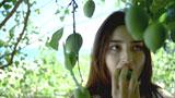 木の実を採る長谷川潤/『キリンゼロ<生>』CM