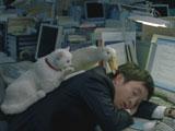 最後は眠ってしまった新入社員にねことアヒルが声を掛ける/『医療保険 新EVER』(アフラック)新CM