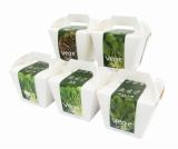 『Vege 栽培キット』はケーキを思わせるパッケージが特長