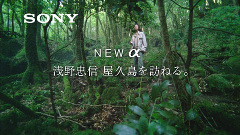 念願の屋久島に降り立った浅野忠信/『α』(ソニー)新CM