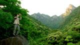 屋久島にやってきた浅野忠信を映す『α』(ソニー)Webサイト