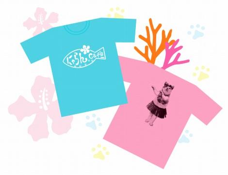 売上金が全額サンゴ礁再生プロジェクトに寄付されるオリジナルTシャツも販売