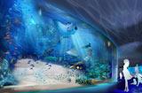 リニューアルオープンするサンシャイン国際水族館の屋内イメージ