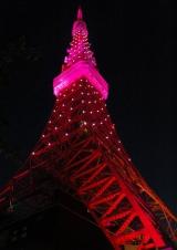 「ピンクリボン運動」の一環でピンク色にライトアップされた東京タワー(1日・午後6時)