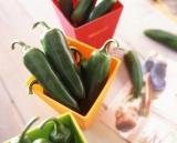 タキイ種苗が1日より発売を開始した、苦味と香りを軽減させた『こどもピーマン』