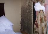 壁がカビだらけ!『世界の汚いホテルランキング2011』