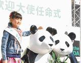 お小遣いを「ジャイアントパンダ保護サポート基金」に募金 (C)ORICON DD inc.