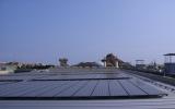 オリエンタルランドの太陽光発電装置 後ろに見えるのは東京ディズニーシーのプロメテウス火山