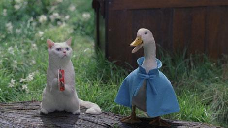 タンバリンを演奏するネコと青いダック