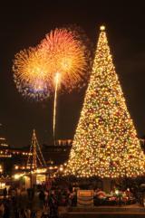 東京ディズニーリゾートがクリスマス企画を発表(写真は昨年のTDS『スターブライト・クリスマス  』) (C)Disney