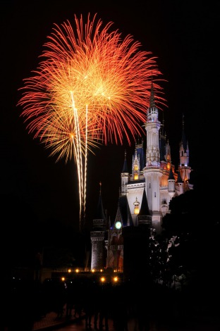 TDL&TDS、今年の年越し営業での特別パレード&ショーが取り止めに(写真はTDL) (C)Disney