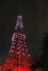 「ピンクリボン運動」でピンク色のイルミネーションに彩られた東京タワー(1日午後6時・港区) (C)ORICON DD inc.