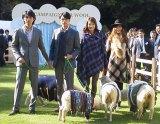 """3日、英国大使館公邸中庭で行われた""""人と羊のファッションショー"""" (C)ORICON DD inc."""