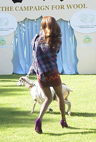 """3日、英国大使館公邸中庭で行われた""""人と羊のファッションショー""""、突然グルグルと回り出した羊にモデルさんもビックリ (C)ORICON DD inc."""