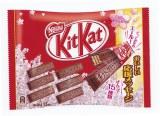 チョコレートに受験生への応援メッセージが刻印された『ネスレ キットカット ミニ 受験生応援メッセージパック』