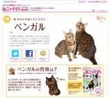 ベネッセコーポレーション『ねこのきもちweb』でスタートした『猫診断』の結果画面