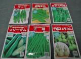 「緑のカーテン」初心者にオススメの野菜類 (C)ORICON DD inc.