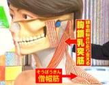 歯を無意識に接触させると、首から胸の筋肉や、肩周りの筋肉にも力が加わり疲弊すると、肩こりに…