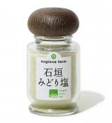 ミドリムシの粉末と塩を混ぜた調味料『石垣みどり塩』