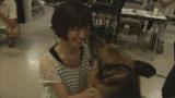 10月8日スタートのTBS系ドラマ『宮部みゆきミステリー パーフェクト・ブルー』でコンビを組む瀧本美織と元警察犬マサ(C)TBS