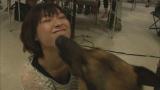 人懐っこいマサは瀧本美織の顔をペロペロなめて愛情表現(C)TBS