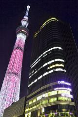 乳がん月間がスタートした10月1日、東京スカイツリーもピンク色にライトアップされた【1日午後6時45分、東京都墨田区】(C)ORICON DD inc.